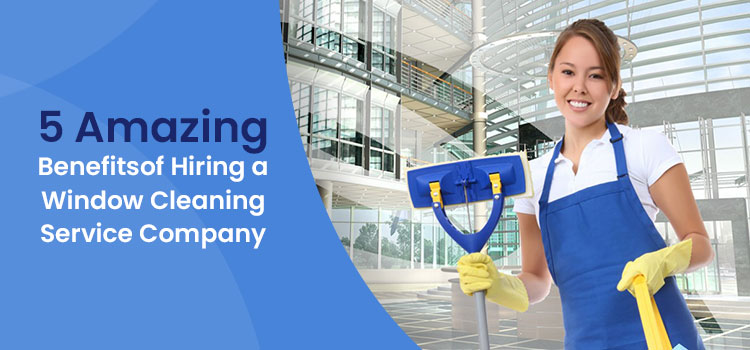 5 Amazing Benefits of Hiring a Window Cleaning Service Company