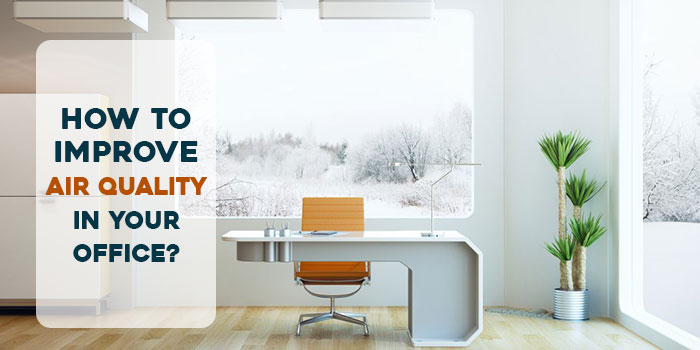 How to Improve Air Quality in your Office